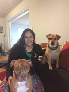 professional dog trainer in atlanta