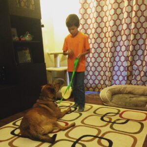 Our Atlanta Dog Training programs get the kids involved!